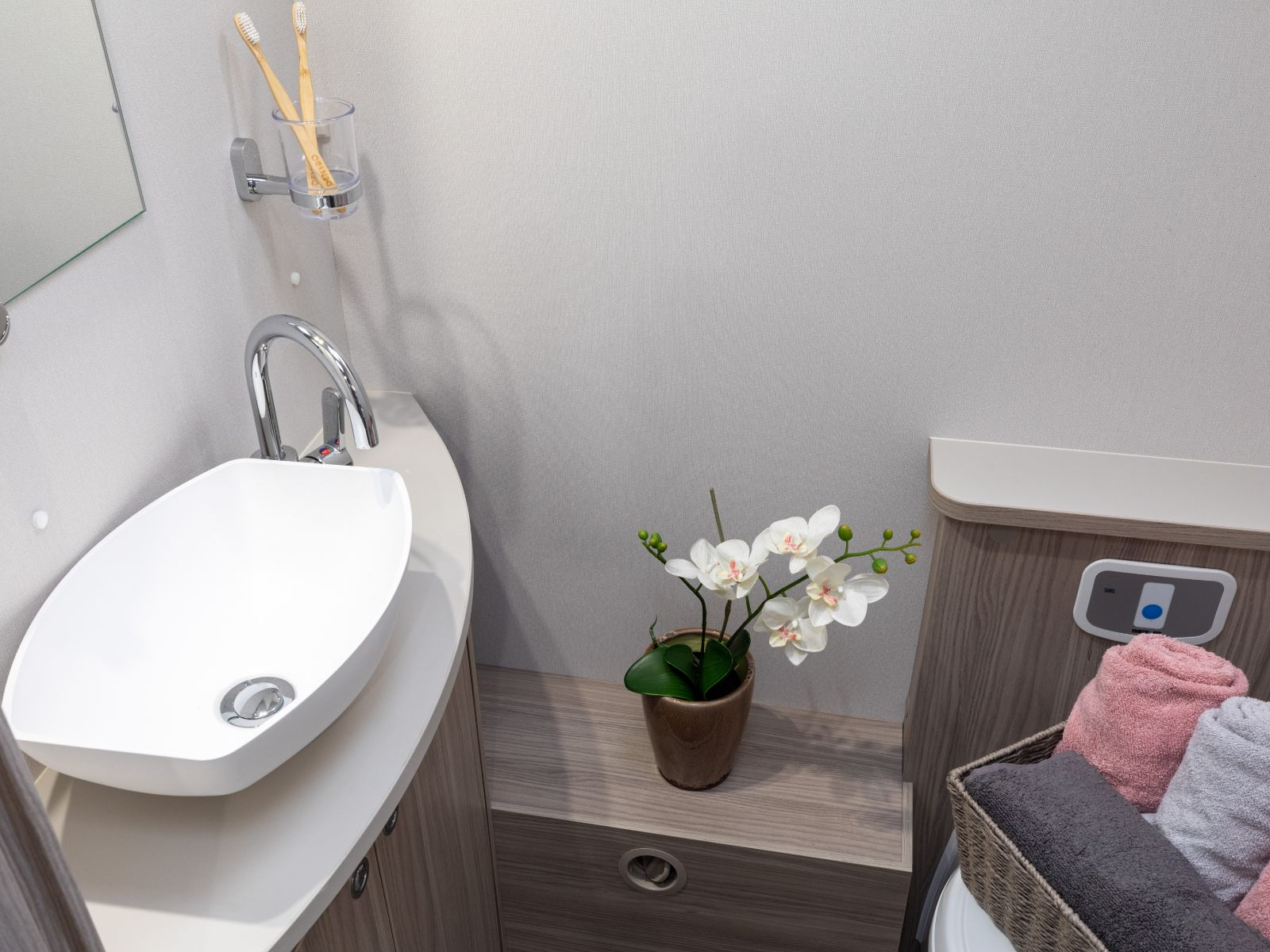 bathroom sink and plant '